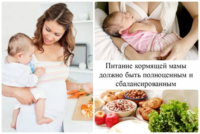Питание кормящей мамы - мифы и реальность   уроки для мам