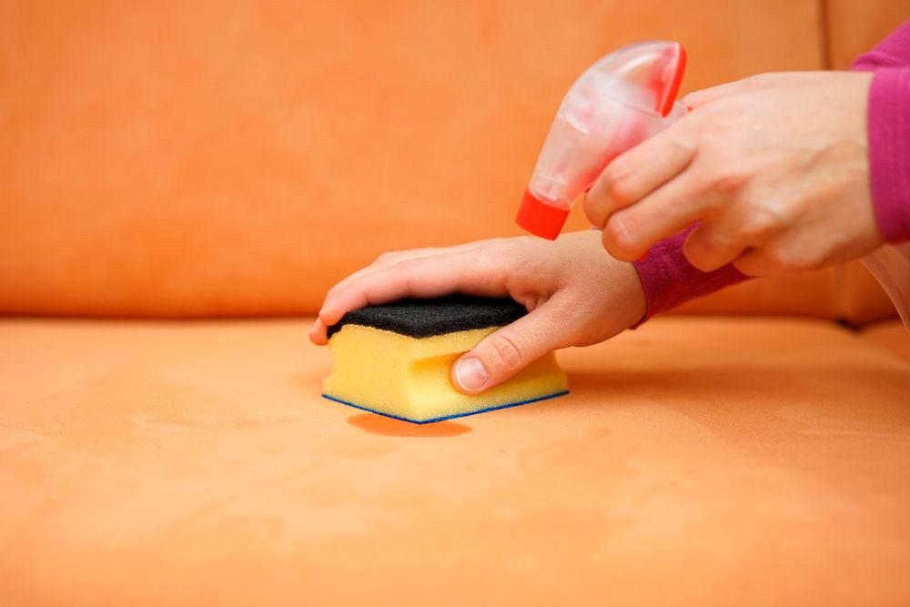 Как отмыть диван от мочи, разные способы очистки поверхности