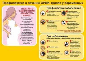 Линекс во время беременности: инструкция по применению