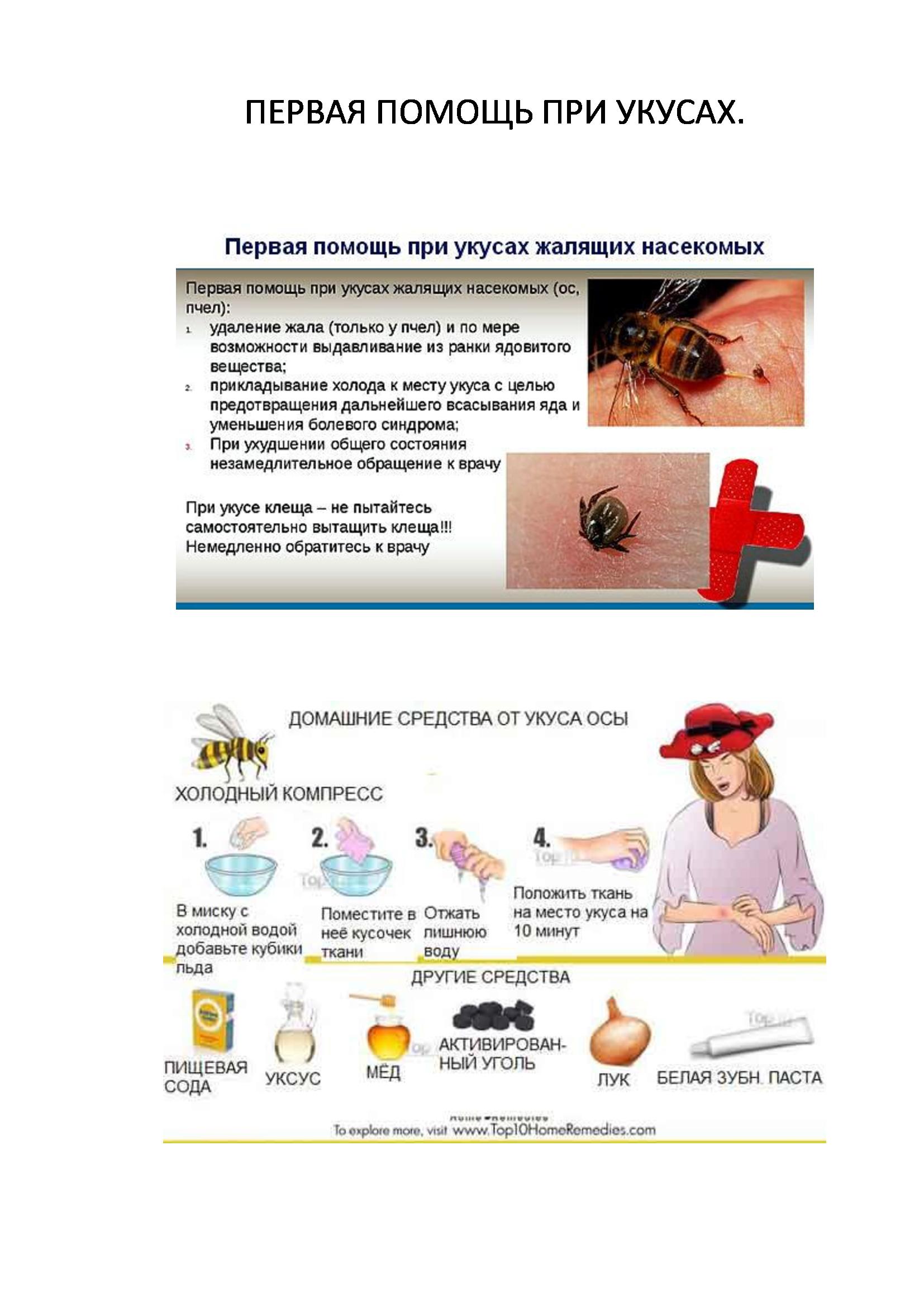 Аптечка пчеловода и первая помощь на пасеке при укусах пчел
