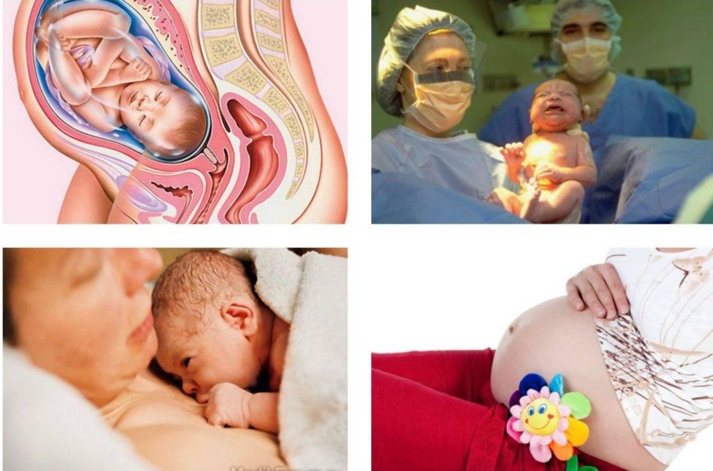 36 неделя беременности: рост, вес и развитие плода, самочувствие будущей мамы