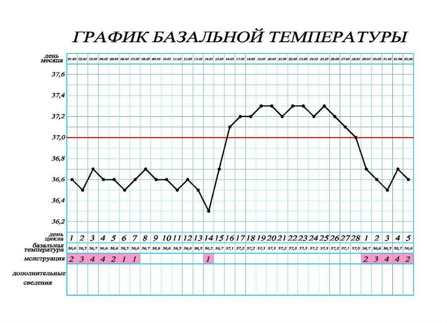 Температура при беременности на ранних сроках | уроки для мам