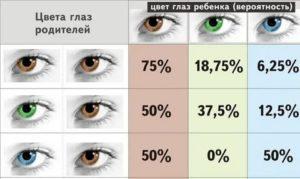 Во сколько у грудничков меняется цвет глаз или когда меняются глаза у новорожденных, секреты изменения цвета глаз у младенца stomatvrn.ru