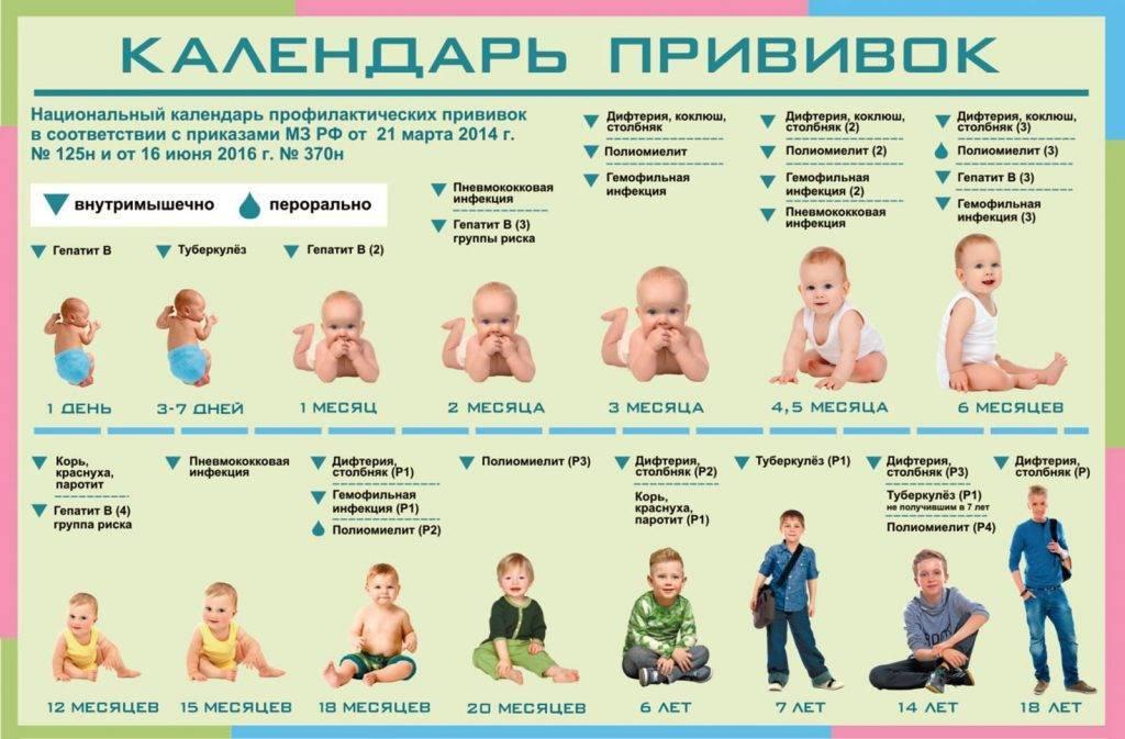 Реакция на прививку корь-краснуха-паротит, календарь и осложнения