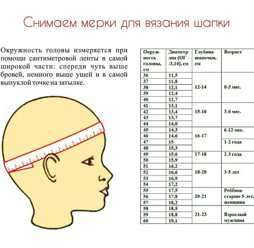 Размер головы ребенка по возрасту