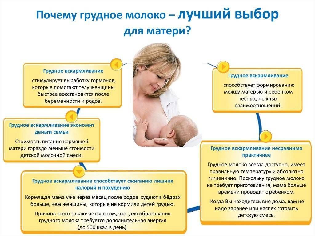 Можно ли забеременеть при кормлении грудью - беременность при лактации