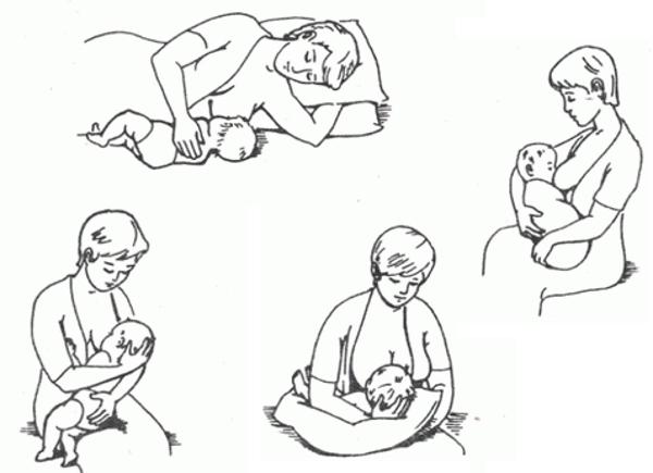 Правильные позы для кормления новорожденного