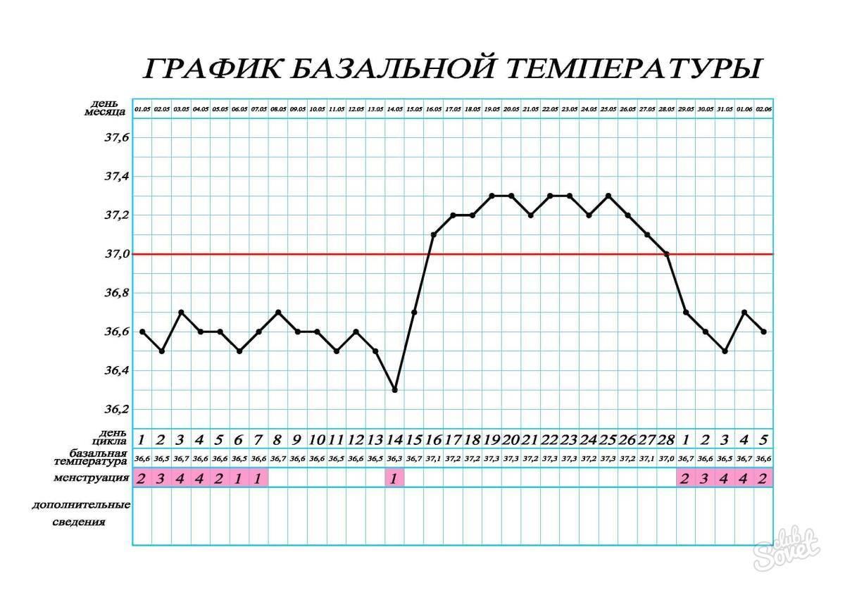 Ректальная температура при овуляции. исследование менструального цикла, температурная кривая