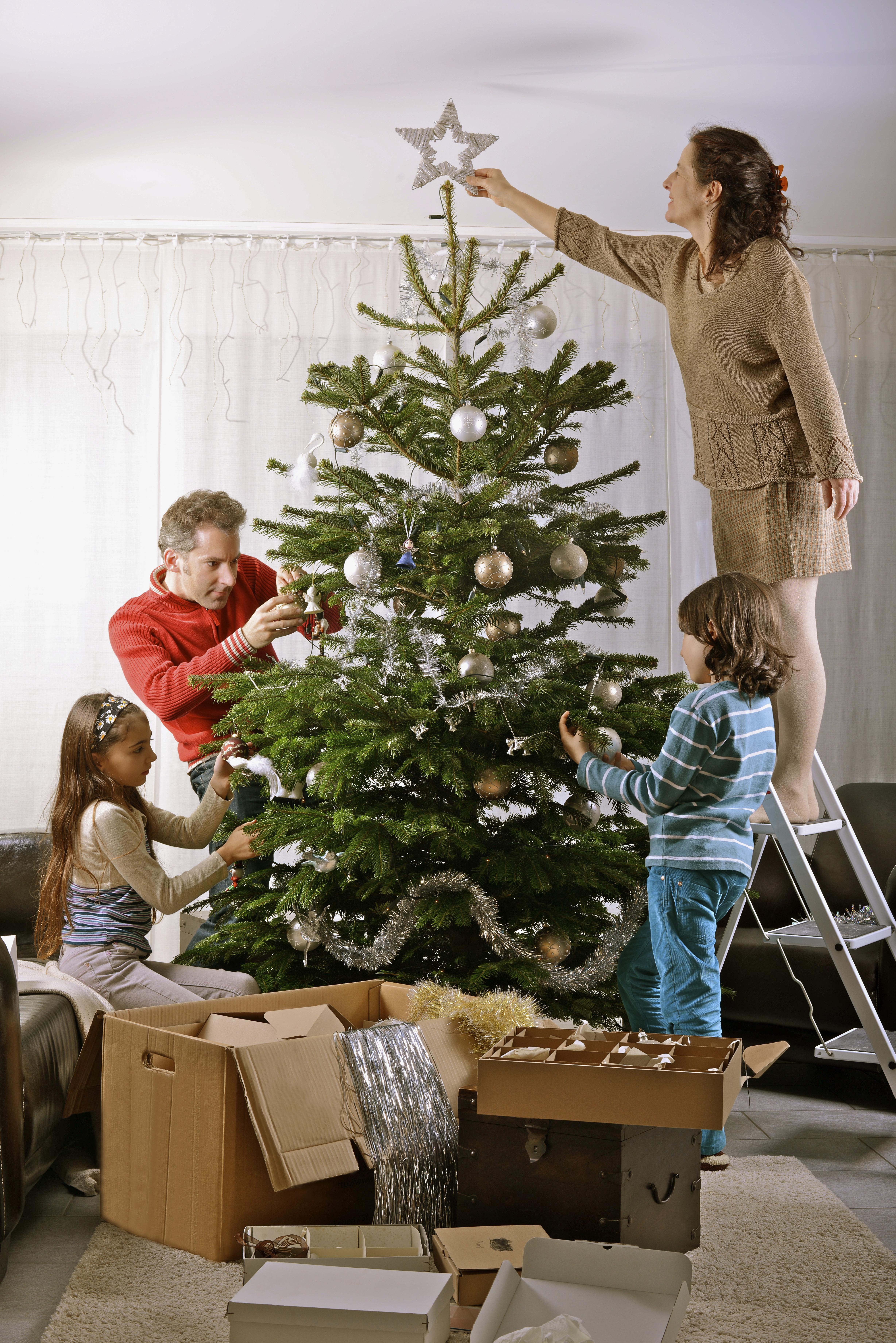 Когда наряжать елку: какого числа ставить дома, когда можно украшать на новый год, в каких числах лучше, за сколько дней до праздника ставить живую ель