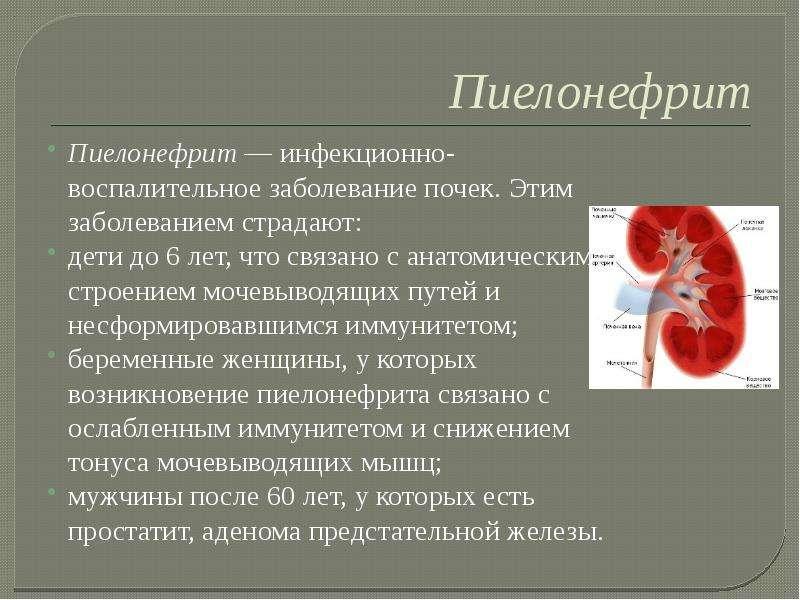 Воспаление почек у детей: причины, симптомы и лечение