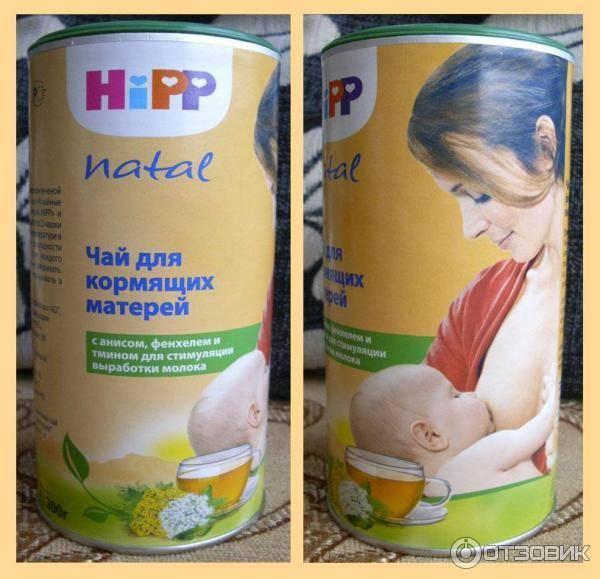Плоды фенхеля при грудном вскармливании — детки-конфетки