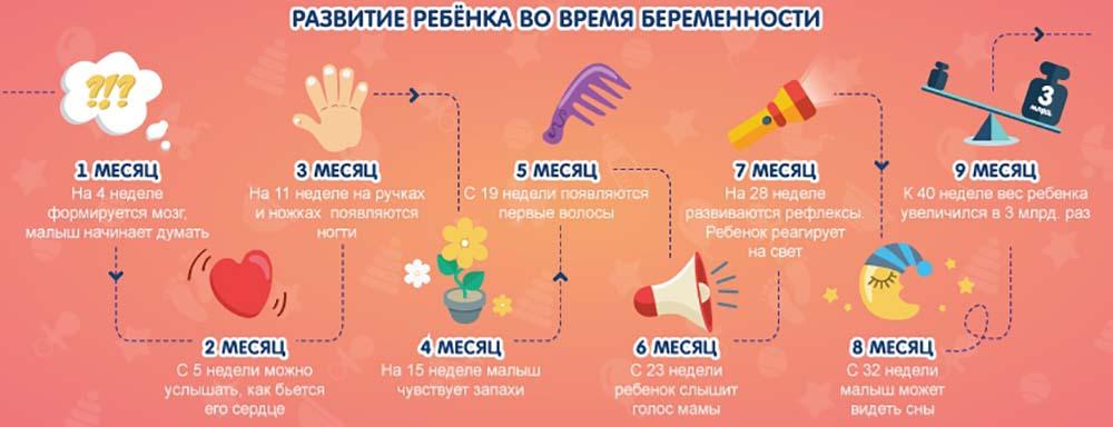 Первый месяц беременности, что нужно знать в 1-й месяц | журнал «лиза. мой ребенок»