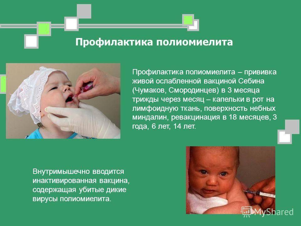 Заразен ли ребенок после прививки от полиомиелита