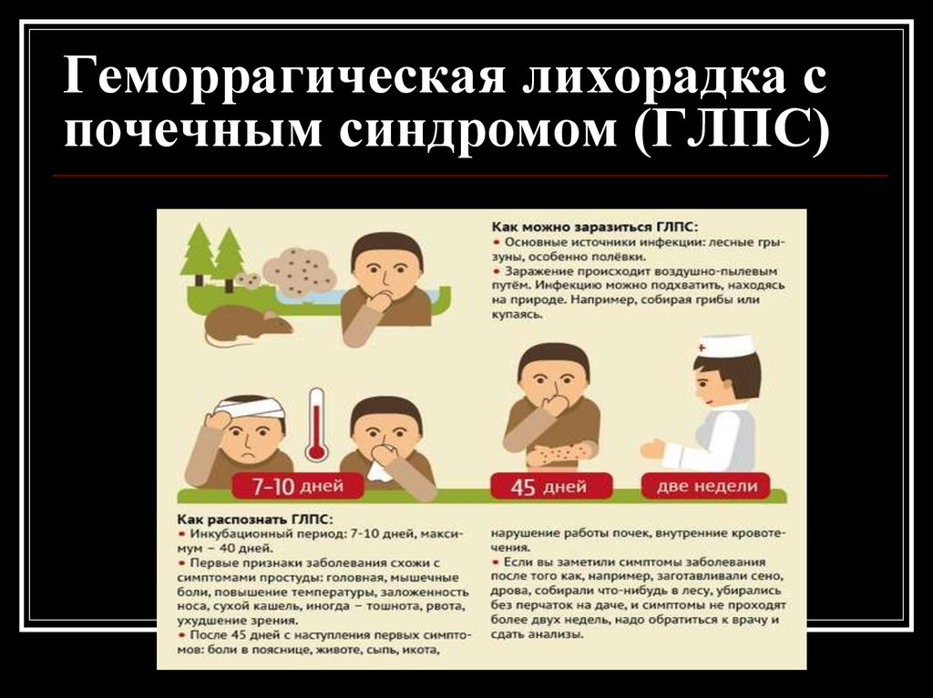 Мышиная лихорадка — симптомы у детей, лечение и профилактика заболевания - wikidochelp.ru