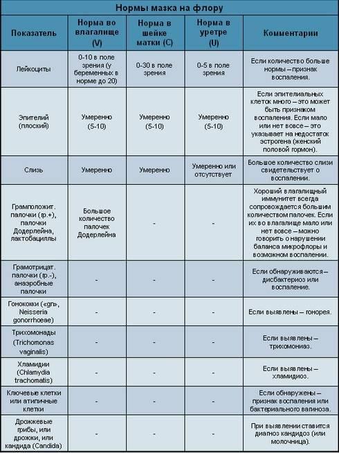 Повышены лейкоциты в мазке при беременности: в чем причины патологии и какова норма лейкоцитов