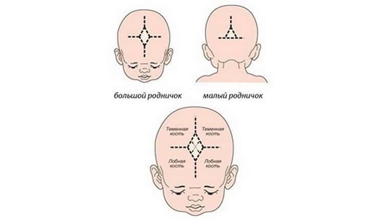 Пульсирует родничок в 4 месяца - здоровый ребенок