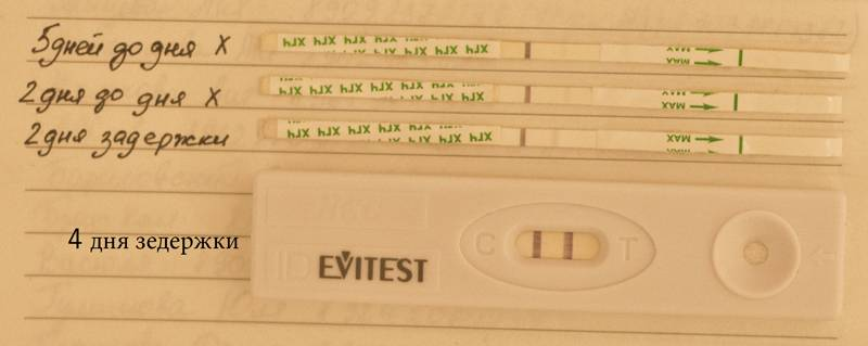Причины задержки месячных при отрицательном тесте на беременность