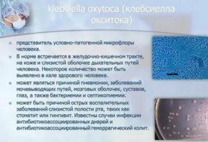 Клебсиелла 10 в 8 степени у грудничка