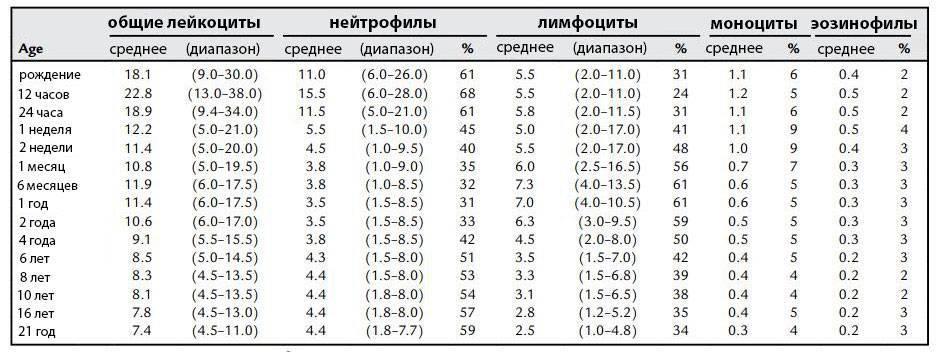 Норма лимфоцитов в крови у ребенка: количество для грудного ребенка до года и более взрослых детей, атипичные лимфоциты