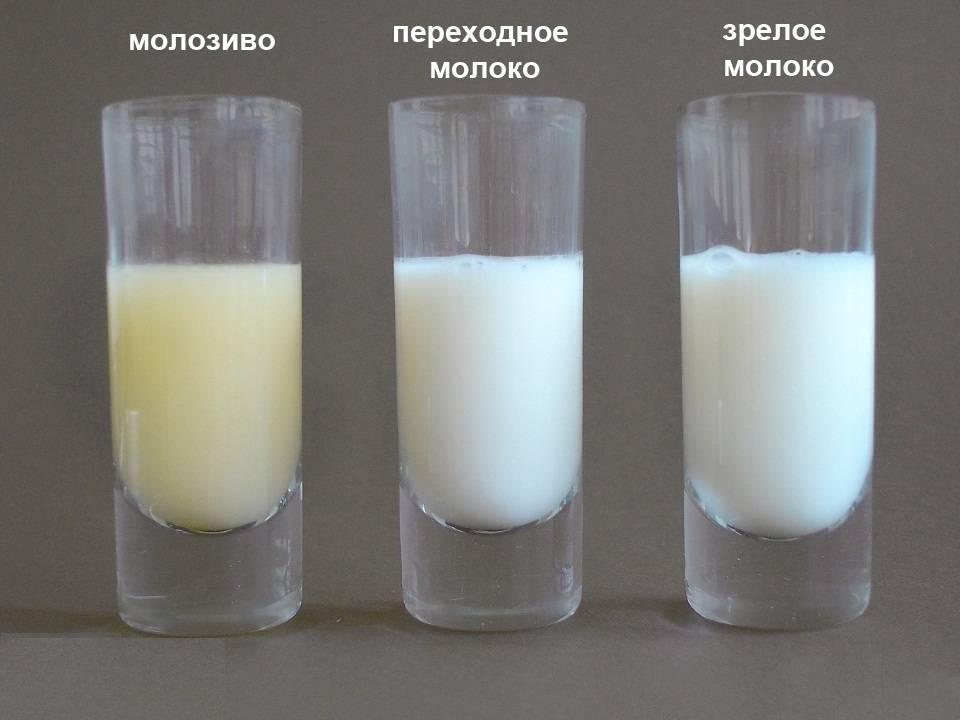Когда приходит молоко после родов: как приготовить грудь к кормлению и правильно приложить младенца