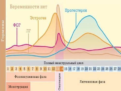 Причины повышения концентрации прогестерона при беременности