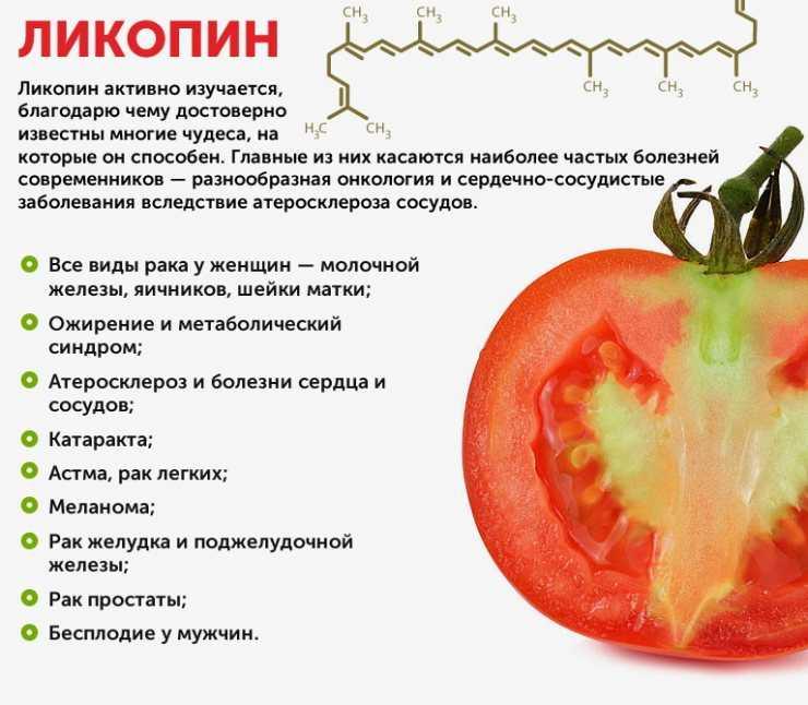 С какого возраста можно помидоры ребенку - беременная