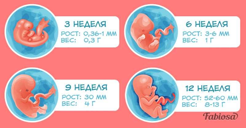 Первые дни беременности: как проявляется зачатие и что делать / mama66.ru