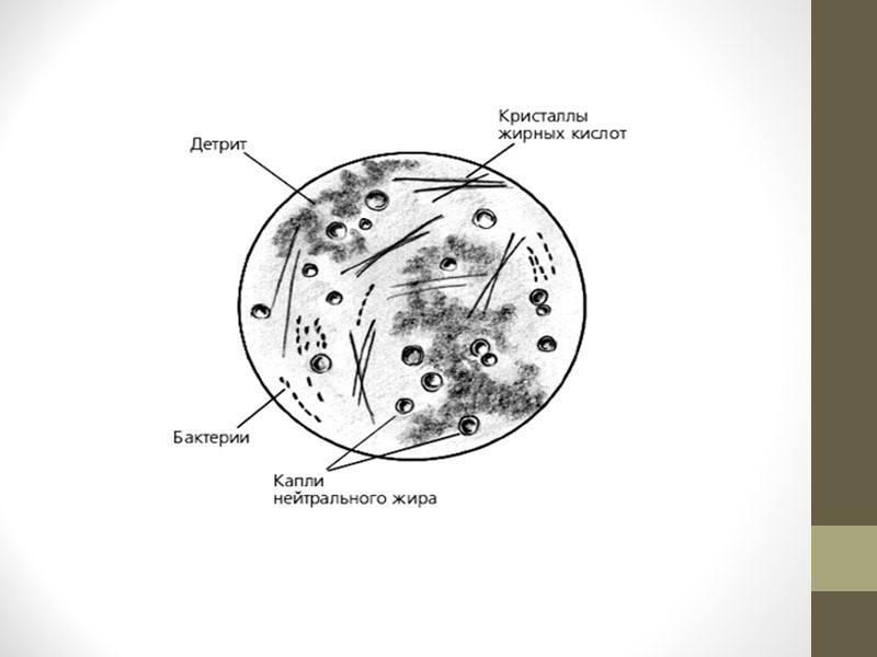 Почему в сперме присутствуют единичные эритроциты и опасно ли это?