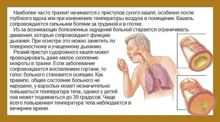 Тяжелое дыхание у ребенка и кашель: причины и что делать, дыхание с хрипами