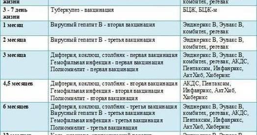 Календарь прививок российской федерации — таблица