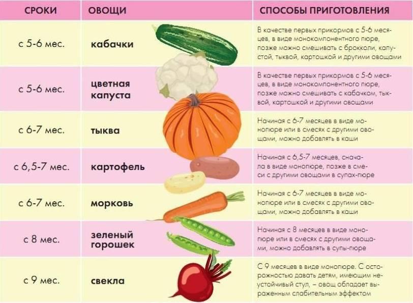 Когда можно давать персики грудничку: правила прикорма