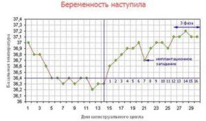 Зачем мерить базальную температуру при беременности
