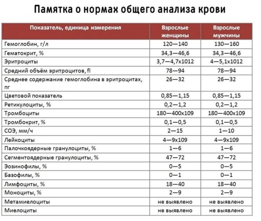 Цветовой показатель крови понижен у ребенка: причины и симптомы. цветовой показатель крови понижен - все советы медика