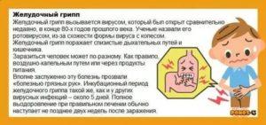 Понос рвота и боль в животе у ребенка без температуры и поноса что делать