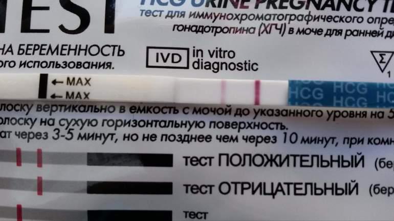 Тест на овуляцию показывает беременность