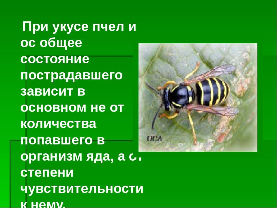 Ребенка укусила пчела