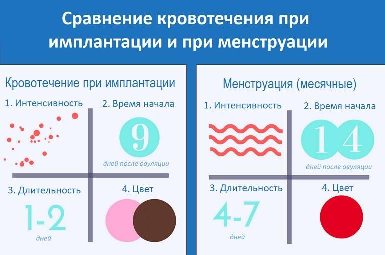 Выделения после овуляции, если зачатие произошло (19 фото): какие выделения могут быть до задержки, при оплодотворении яйцеклетки, коричневые что означают