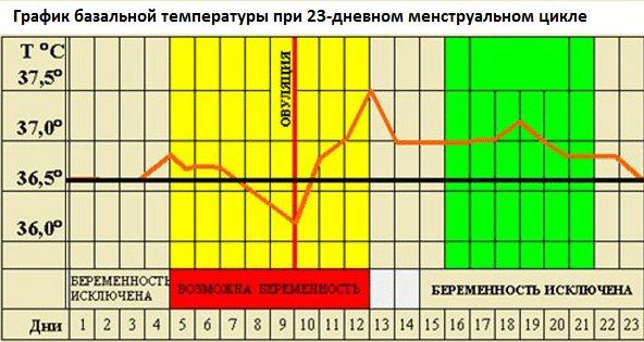 Какой должна быть базальная температура перед месячными