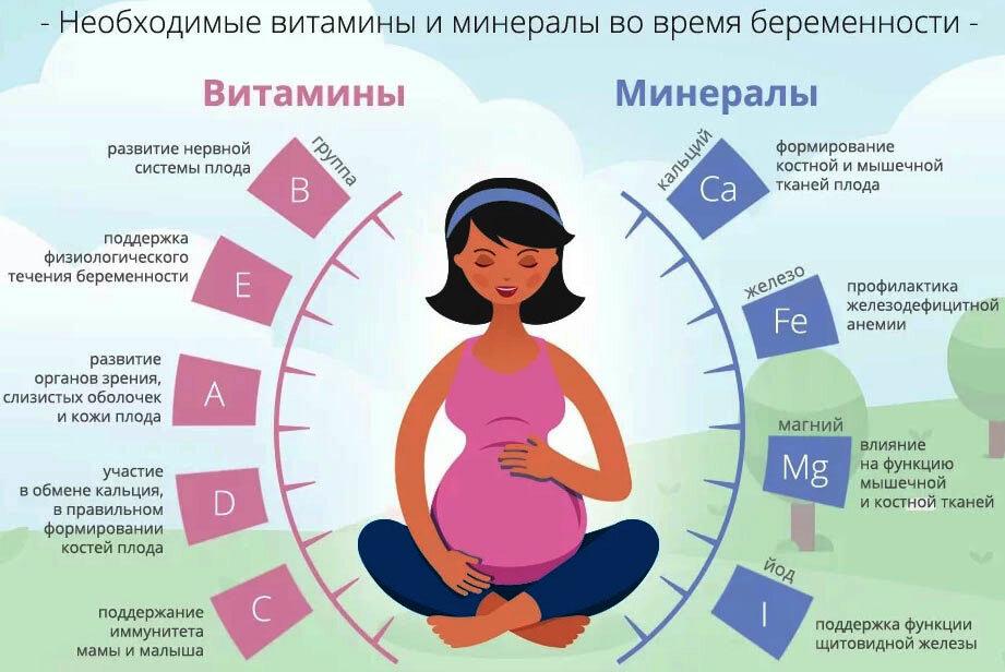 Как начинается и протекает беременность?