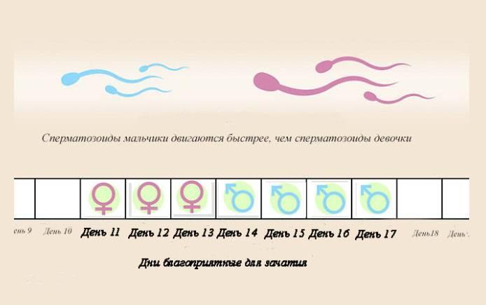 Лунный календарь зачатия на 2021 год - благоприятные дни