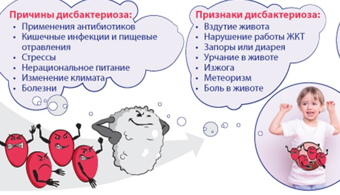 Что такое дисбактериоз, какие анализы на дисбактериоз у грудничка нужно сдать и как его вылечить?