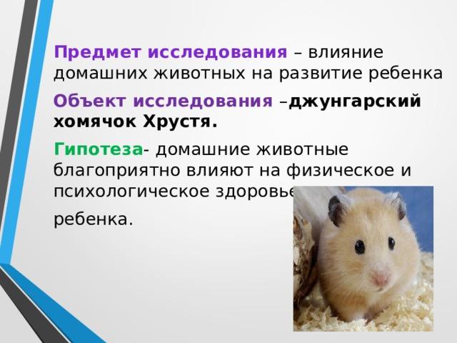 Взаимоотношения детей и домашних животных — womanwiki - женская энциклопедия