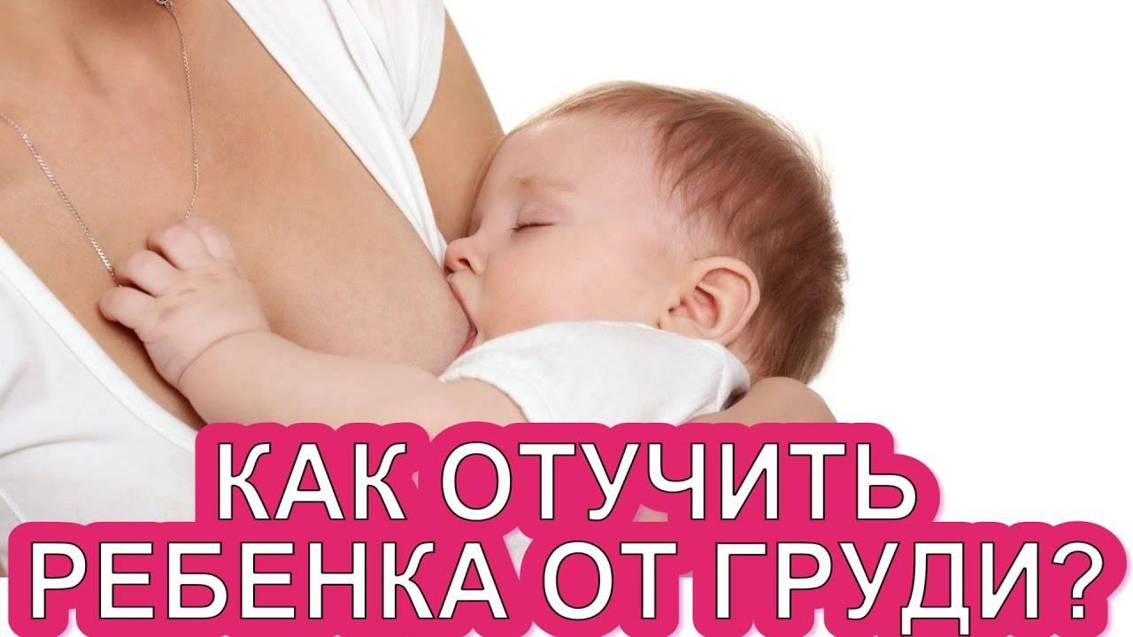 Отлучение ребенка от грудного вскармливания: правильная схема, перетягивание и таблетки