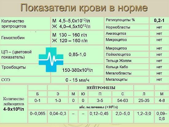 Общий анализ крови цветовой показатель понижен у ребенка
