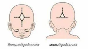 Почему у грудничка в 2-3 месяца пульсирует родничок: нормальные и патологические причины пульсации