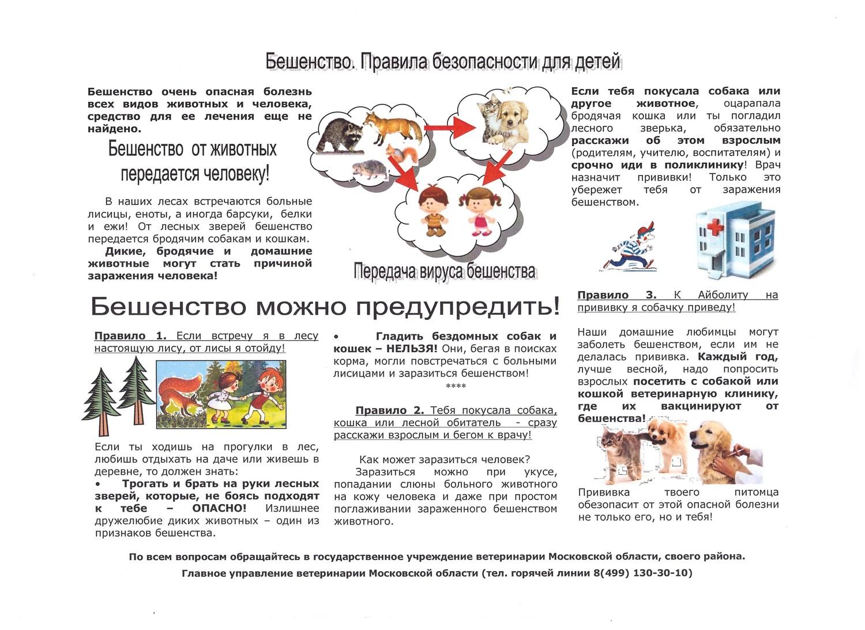 Что делать, если ребенка укусила собака, домашняя или уличная, первая помощь при укусе за лицо, губу, с кровью и без