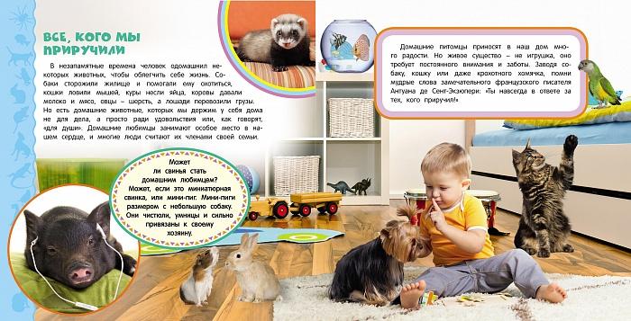 Домашнее животное для детей: какого питомца лучше завести?