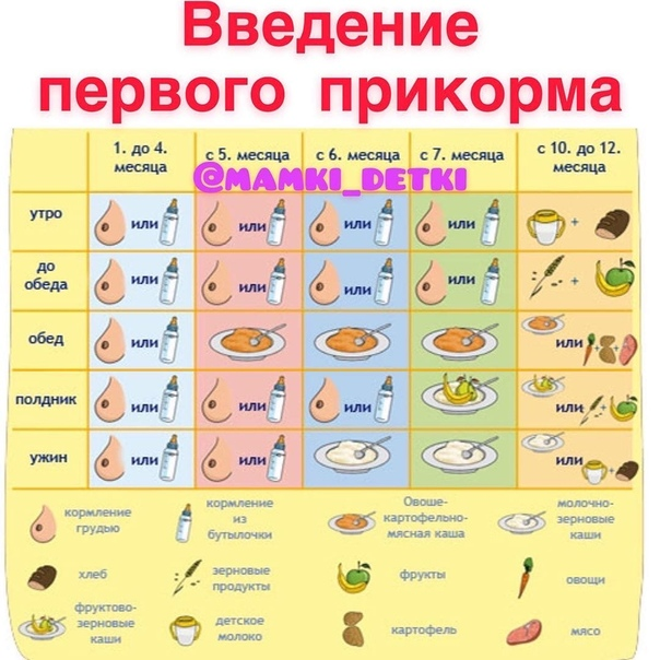 Таблица прикорма ребенка в 6 месяцев при грудном вскармливании