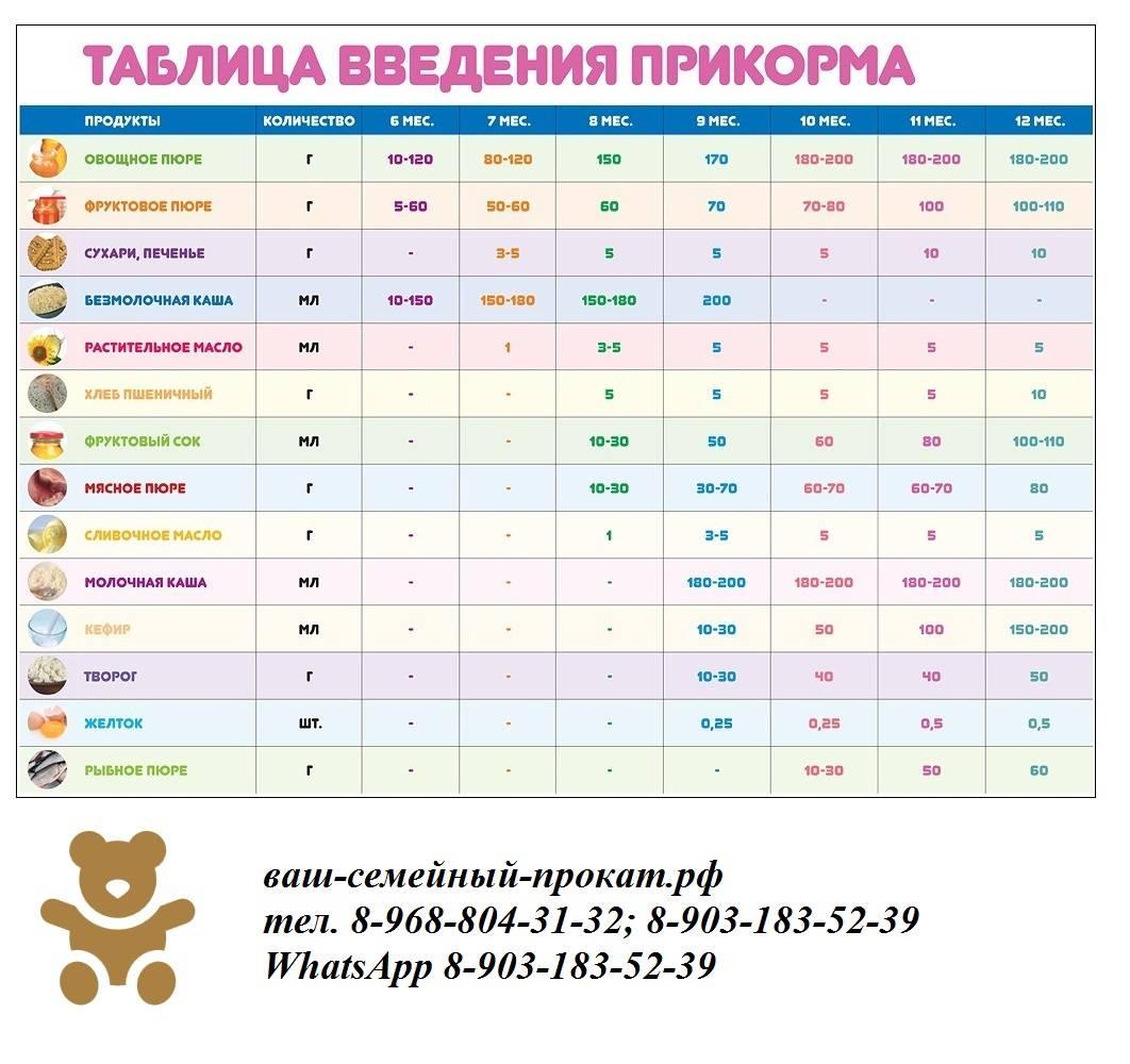 Питание ребенка в 6 месяцев, режим, меню ребенка 6 месяцев на грудном и искусственном вскармливании. как вводить прикорм в 6 месяцев?