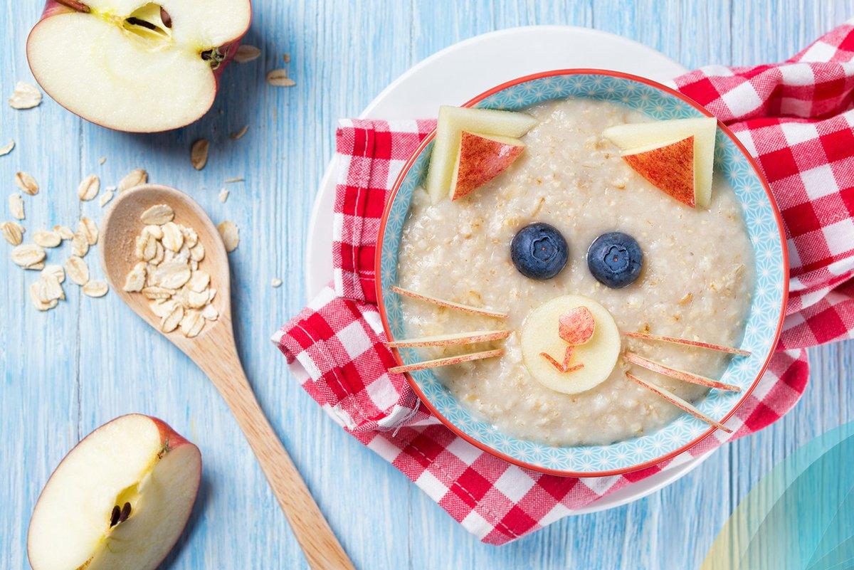 6 лучших рецептов полезных завтраков для детей от года до трех – что готовить ребенку на завтрак? | только девушке